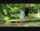 【ひかり】水色サマーデイズ【踊ってみた】
