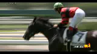 オウケンの完全自家生産馬が勝利 - オウケンダイヤ 馬体重376kg