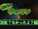 【実況】俺たちのテラリア- #2