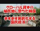 【三橋貴明】グローバル経済の植民地に堕ちた韓国