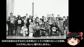 【ゆっくり保守】韓国人がフランスで安保反対集会を主催