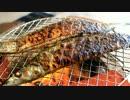 【車庫めし】秋刀魚の塩焼き【ブッシュクラフト】