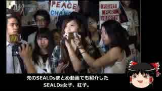【ゆっくり保守】SEALDs女子の保身ツイートが酷い