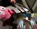木琴&鉄琴でドラクエ4「ジプシーダンス」を演奏してみた~DragonQuestⅣ