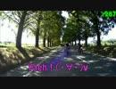 走ってるのが大好きな(´*ω*`)の2015 SW 2日目 その2(~琵琶湖)
