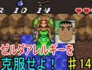 【神トラ】ゼルダアレルギーを克服せよ!【初見実況】part14