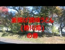 第87位:【ビバ!デカ盛り】    釜揚げ讃岐うどん       (香川県) の巻 thumbnail