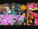 【パズドラ】ハロウィン仕様の「ソニア」求めて魔法石185個をガチ投入! thumbnail