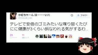 【ゆっくり保守】SEALDs紅子「安倍はしゃべるゴミ」