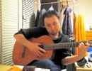ギターを始める器用なアザラシ