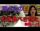 【食石】富士山の石を渋沢一葉に食べさせた結果・・・!!