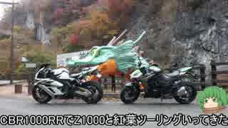 【CBR1000RR】Z1000と紅葉見にいってきた【ツーリング】