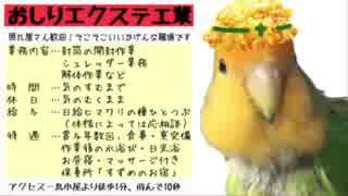 おしりエクステ工業(日本ブレイク工業/コザクラインコMAD)