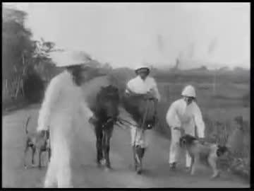 帝国主義時代のフランス領インド...