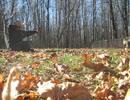 番外編:短弓狩猟練習 :Backyard Archery