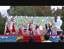 [2015秋]踊ってみたin大阪府大「ヲターソングとGODステップ」3/4 [GOD団]