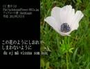 【初音ミク】シベリウス:OP88-3白いアネモネVitsippan thumbnail