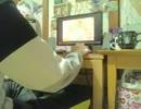 【過激映像】 エックスビデオを観るか(*´∀`*)