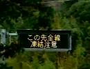 ヤビツ・宮が瀬・道志みち プチツーリング