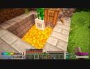 【Minecraft】ゆったりゆとりクラフトSurvival #11