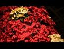 聖夜の鐘を二人で Rana09464with小峰シロ