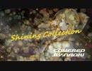 【鏡音レン】Shining Collection【Icemanカバー】