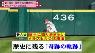 【MLB】新・3大 メジャーの面白球場タルズ・ヒルの名場面