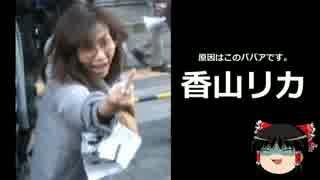 【ゆっくり保守】香山リカとカウンターデモの実態