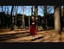 【踊ってみた】橙ゲノム【澪】 thumbnail