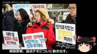 【ゆっくり保守】韓国警察、違法デモについに動き出す。