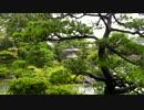 【癒し系BGM】 雨と雫 日本庭園 再編集 【自然音】
