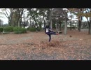 Kick The Fallen Leaves Crazily (Reverse Log 063)
