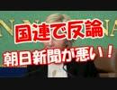 【国連で発言】 朝日新聞が悪い!