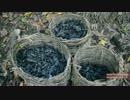 ホモと学ぶ木炭の作り方.Making Charcoal