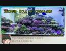 サンゴ水槽 システム紹介動画 Part4 息抜き回 皆さんの水槽編