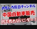 【中国自動車販売】 何で売れないニダ~!