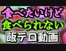 第33位:ガバガバ発掘部【食品サンプル/ミニチュアフード/フェイクスイーツ】 thumbnail