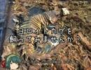 第31位:【修正版】【ゆっくり】ヨロイトカゲを飼ってみませんか? thumbnail