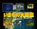 第3位:NHKでの放送事故