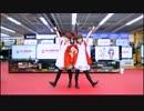 【わっぺん。】ビックカメラのうた 踊ってみた【びーくびっくびっく♪】 thumbnail