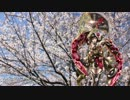 【Sachiko】桜ノ雨【ボカロカヴァー】