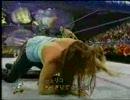 【WWE(WWF)】RVDvsジェリコ
