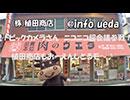 【植田商店】びーくびっくびっく♪びっくか~めら!【超ビックカメラ】 thumbnail