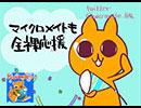 【マイクロメイト】びーくびっくびっく♪びっくか~めら!【超ビックカメラ】 thumbnail