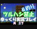 [Terraria steam]ツルハシ&釣り禁止プレイ 其17[ゆっくり] thumbnail
