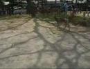 世界樹の迷宮:B2Fにてからインスパイヤ