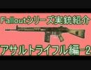 Falloutシリーズ 登場実銃紹介 ライフル編 ④AR-2