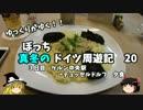 【ゆっくり】ドイツ周遊記 20 ケルン→デュッセルドルフ 夕食