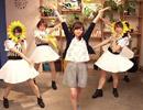 【紺野あさ美×ひまわりタイム!】モーニング娘。'14「What is LOVE?」を踊ってみた【紺野、今から踊るってよ】