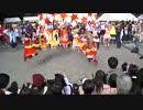 【東大生が】2015駒場祭⑨東大踊々夢【踊ってみた】Part6 thumbnail